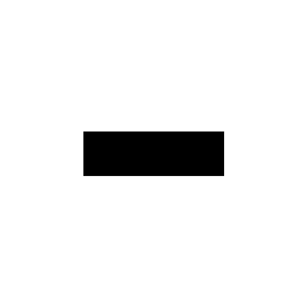 Logo TSFM