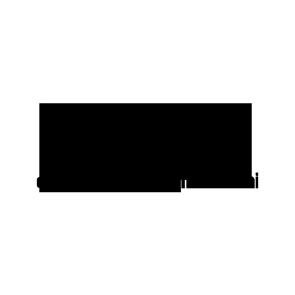 Logo SNCCI